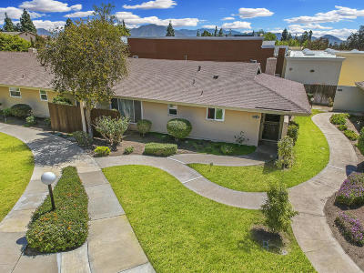Camarillo Single Family Home For Sale: 2274 Camilar Drive