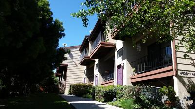 Ventura Single Family Home Active Under Contract: 4859 Loma Vista Road