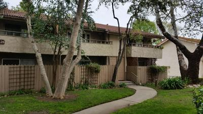 Westlake Village Single Family Home For Sale: 31567 Lindero Canyon Road #7