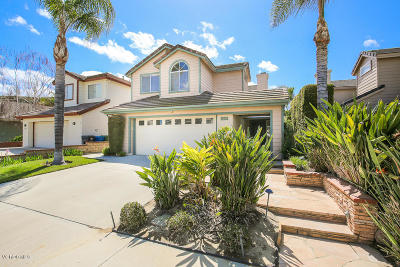 Simi Valley Single Family Home For Sale: 3080 Sleepy Hollow Street
