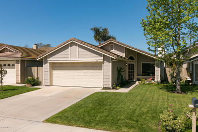 Camarillo Single Family Home For Sale: 161 Camino El Rincon