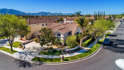 Camarillo Single Family Home For Sale: 1964 Del Ciervo Place