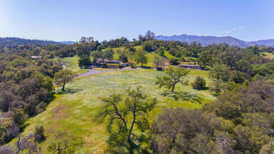 Ojai Single Family Home For Sale: 904 Creek Road