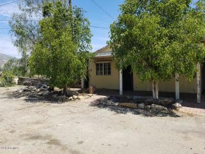 Fillmore Single Family Home For Sale: 3531 E Telegraph Road