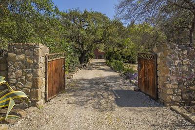 Ojai Single Family Home For Sale: 11380 Ventura Avenue