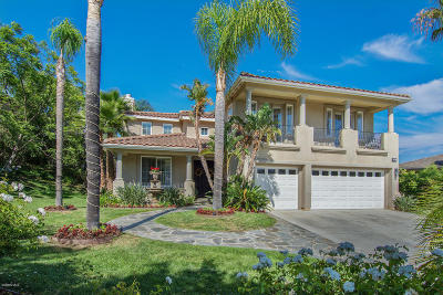 Thousand Oaks Single Family Home For Sale: 2837 Country Vista Street