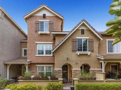 Camarillo Single Family Home For Sale: 266 Lightwood Street