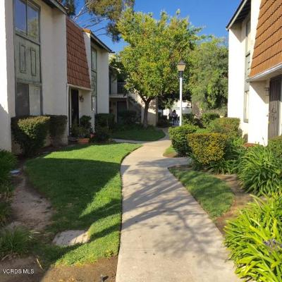 Santa Paula Single Family Home Active Under Contract: 102 E Ventura Street #B