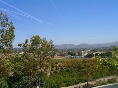 Camarillo Single Family Home For Sale: 2913 Antonio Drive #101