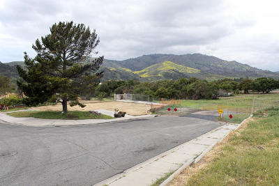 Ventura County Residential Lots & Land For Sale: 357 Los Cabos Lane