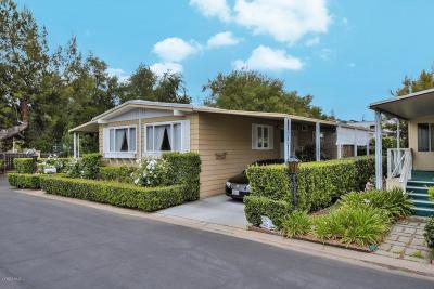Mobile Home Pending: 42 Don Antonio Way #42