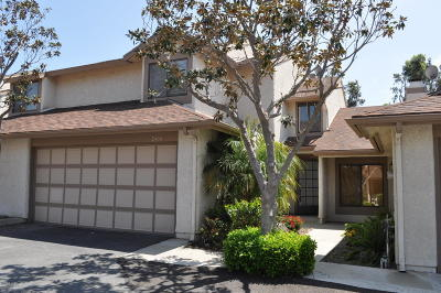 Ventura Single Family Home For Sale: 2414 Chippewa Lane