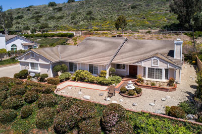 Single Family Home For Sale: 6795 Aviano Drive