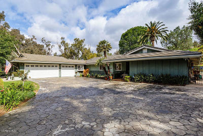Camarillo Single Family Home For Sale: 984 Camino Concordia