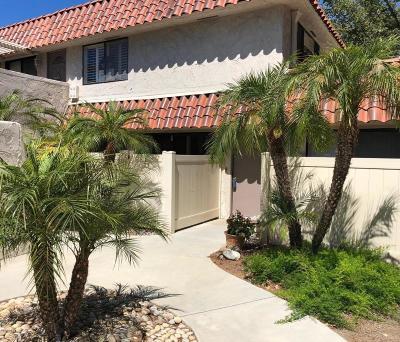 Westlake Village Single Family Home For Sale: 2846 Instone Court