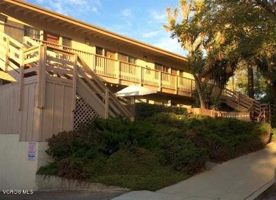 Santa Barbara Multi Family Home For Sale: 163 La Cumbre Road