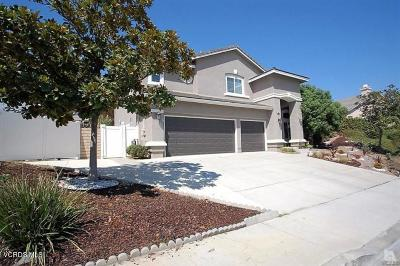 Simi Valley Single Family Home For Sale: 1193 Acapulco Avenue