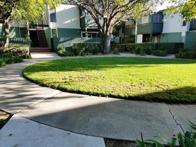 Ventura Single Family Home Active Under Contract: 3700 Dean Drive #3003