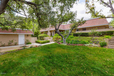 Calabasas Single Family Home For Sale: 4371 Park Milano