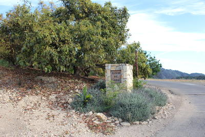Ventura County Residential Lots & Land For Sale: 10894 Creek Road