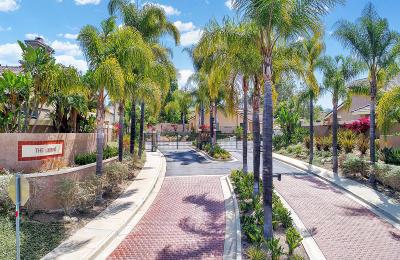 Simi Valley Single Family Home For Sale: 50 Iron Ridge Lane