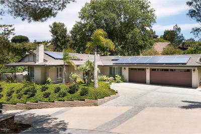 Camarillo Single Family Home For Sale: 824 Piropo Court