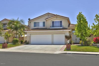 Camarillo Single Family Home For Sale: 4360 Calle Mapache