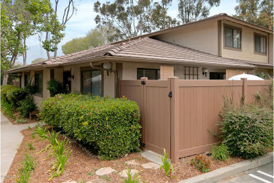 Ventura Single Family Home For Sale: 597 Melville Lane