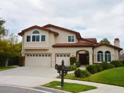Simi Valley Single Family Home For Sale: 239 Golden Fern Court