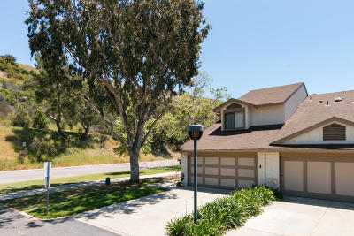 Ventura Single Family Home For Sale: 470 Barry Drive