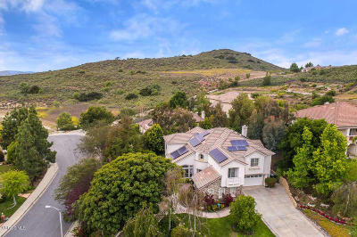 Thousand Oaks Single Family Home For Sale: 319 Briar Bluff Circle