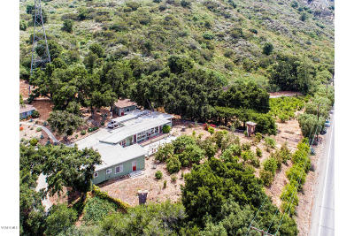 Santa Paula Single Family Home For Sale: 19880 S Mountain Road