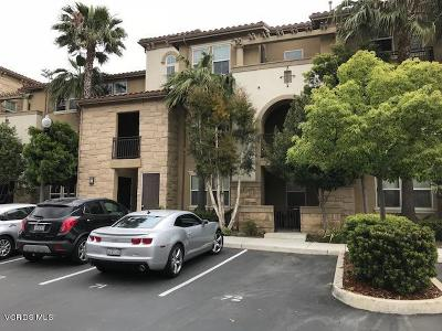 Camarillo Rental For Rent: 208 Riverdale Court #713