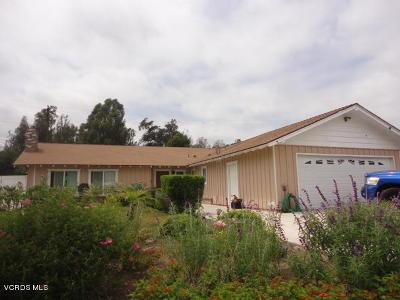 Santa Paula Single Family Home For Sale: 426 Bradley Street