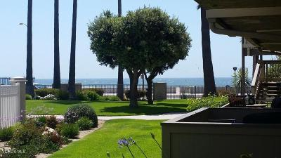 Port Hueneme Single Family Home For Sale: 293 E Surfside Drive