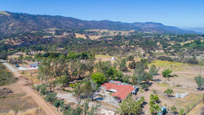 Santa Paula Single Family Home For Sale: 11947 Koenigstein Road