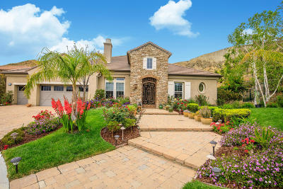 Simi Valley Single Family Home For Sale: 4386 White Hawk Lane
