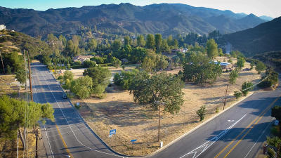 Agoura Hills Single Family Home For Sale: 28825 Lake Vista Drive