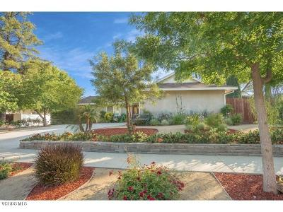 Calabasas Single Family Home For Sale: 5751 Parkmor Road