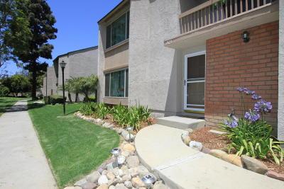 Ventura Single Family Home Active Under Contract: 1423 Iguana Circle