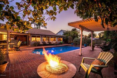 Thousand Oaks Single Family Home For Sale: 55 E Avenida De Los Arboles