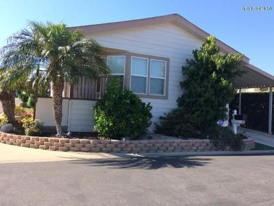 Ventura Mobile Home Active Under Contract: 11100 Telegraph Road #41