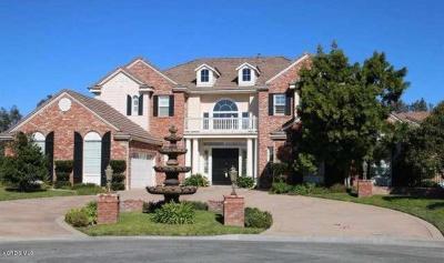Camarillo Rental For Rent: 5305 Calarosa Ranch Road
