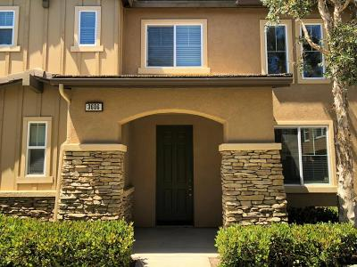 Single Family Home For Sale: 3606 Jolly Roger Way