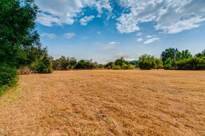 Residential Lots & Land For Sale: 12412 Linda Flora Drive