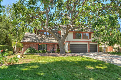 Westlake Village Single Family Home For Sale: 3352 Medicine Bow Court