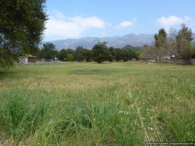 Residential Lots & Land For Sale: 260 E El Roblar Drive