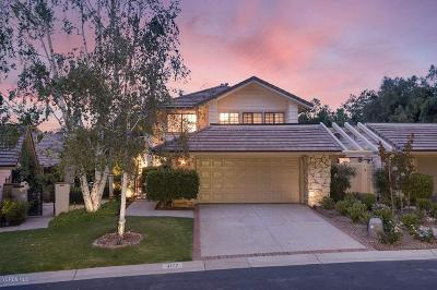 Westlake Village Single Family Home For Sale: 4177 Dan Wood Drive