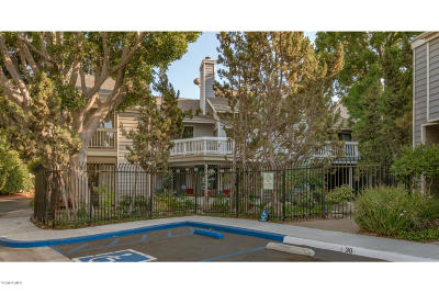 Camarillo Single Family Home For Sale: 641 Arneill Road