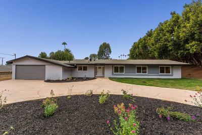 Camarillo Single Family Home For Sale: 445 Avocado Place